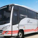 Bus Medium 35 Seat White Horse