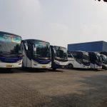 big-bus-suryaputra