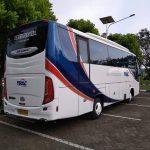 bus-medium-trac-belakang