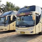 Sewa Bus Melody Transport