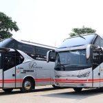 bus-pariwisata-white-horse-hdd-series