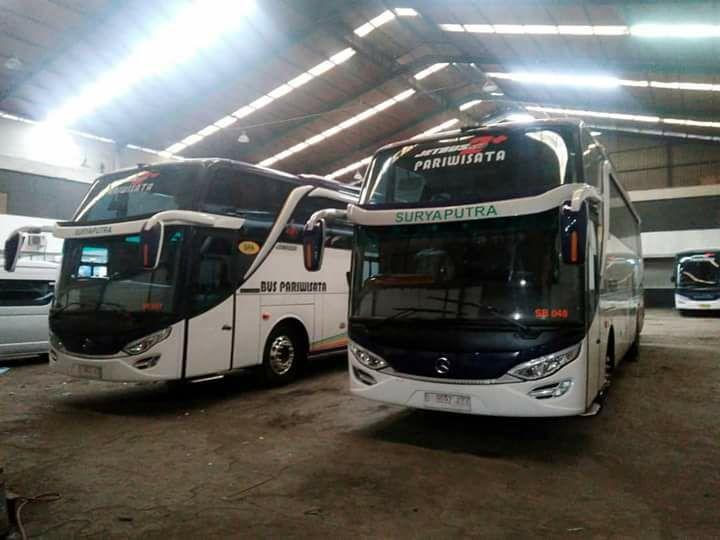 bus suryaputra hdd Armada Bus Mewah