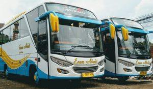 Bus Esem Abadi MHD 33 Seat