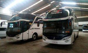 bus-suryaputra-hdd